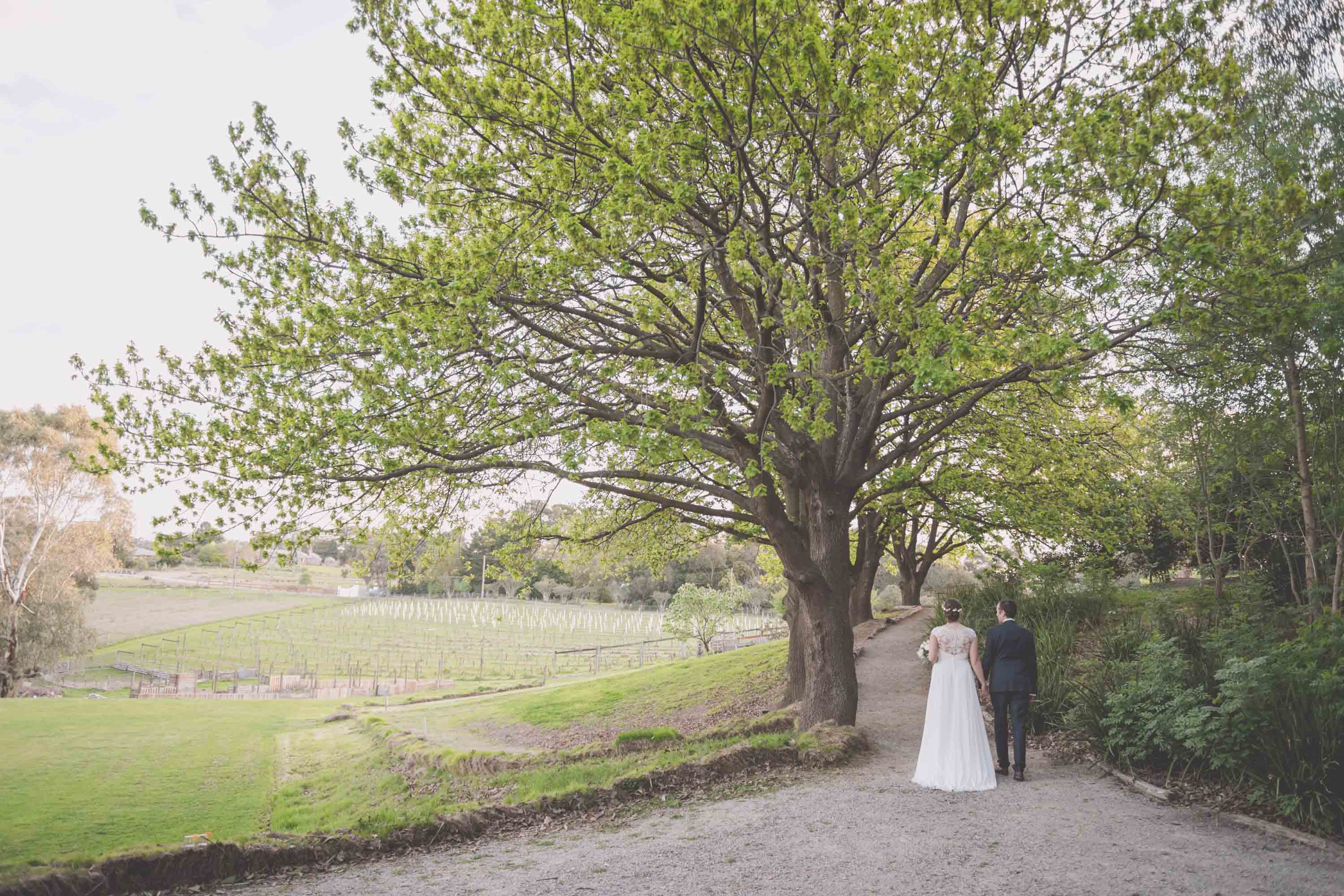 A bride and groom walk up the aisle together under a green oak tree.